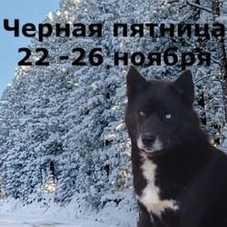 WhatsApp Image 2018-11-19 at 15.16.33
