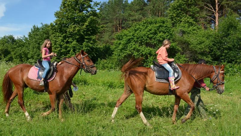 <span>Программы с лошадьми - прекрасный отдых и незабываемые впечатления!</span>