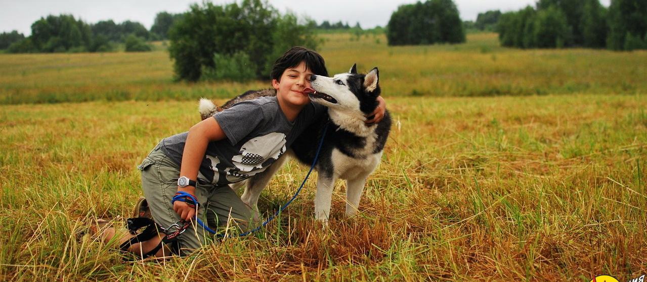 <span>Это общение с ласковыми и активными собаками</span>
