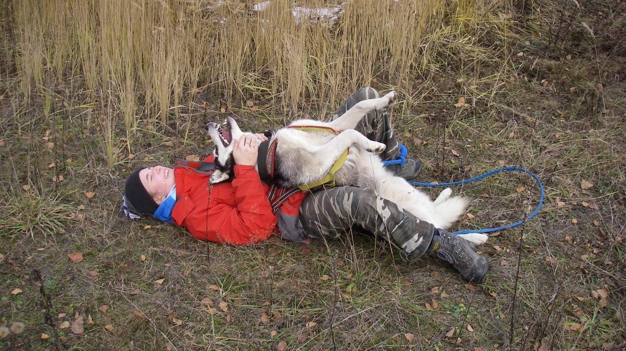 <span>Найти подход к собаке, в короткие сроки завоевать её доверие и стать членом стаи </span>