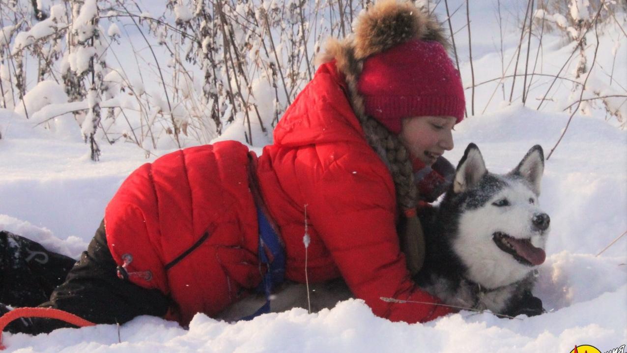<span>Поиск взаимопонимания с собакой</span>