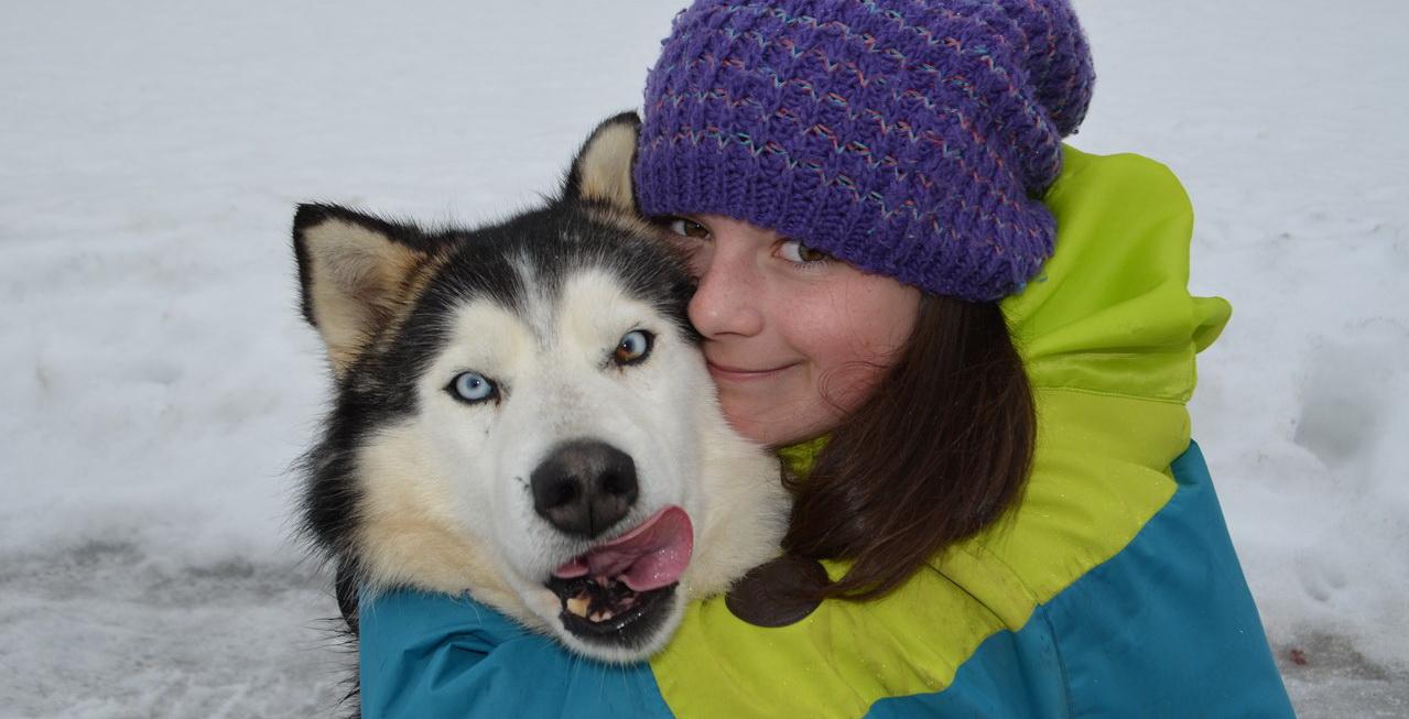 <span>Приглашаем любителей собак на одну из самых  трогательных программ «Коллекции Приключений».</span>